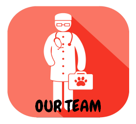 meet our team at Dr Jana's pet hub vet clinic